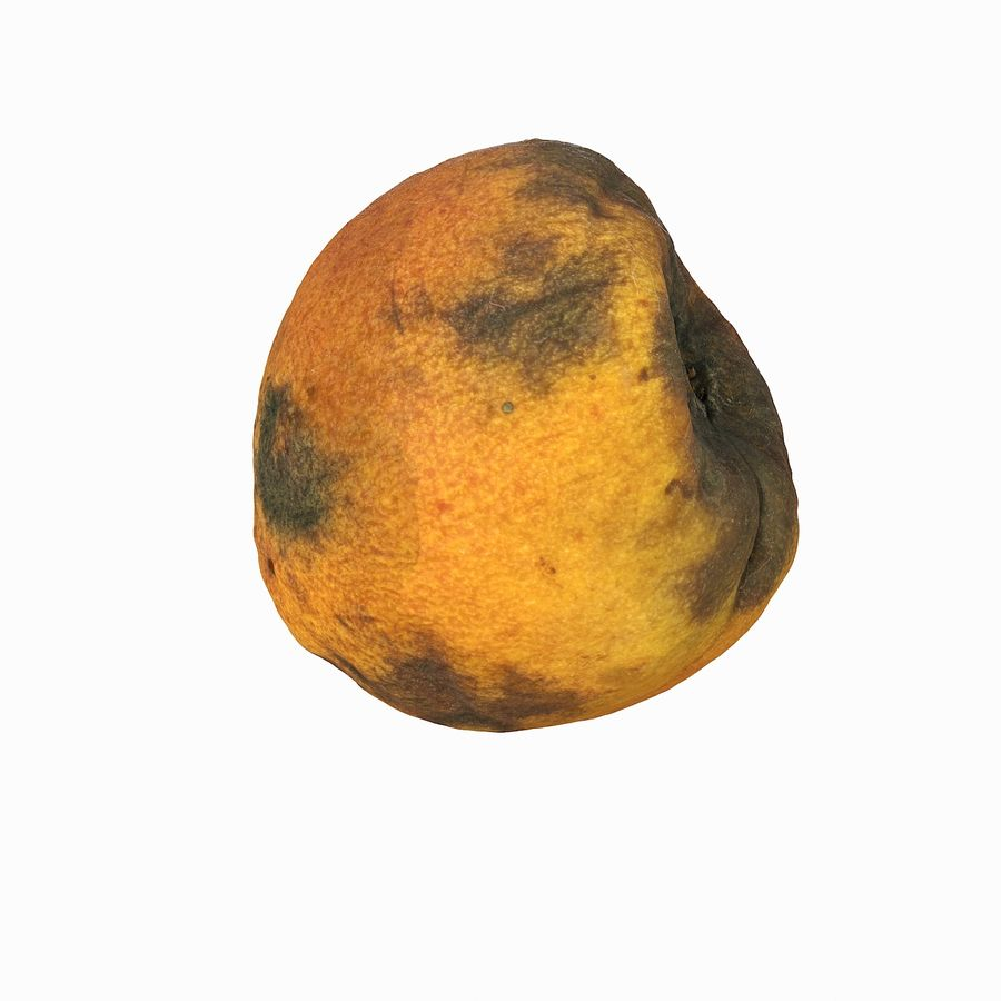Rotten Rotte Apricot 03 royalty-free 3d model - Preview no. 25