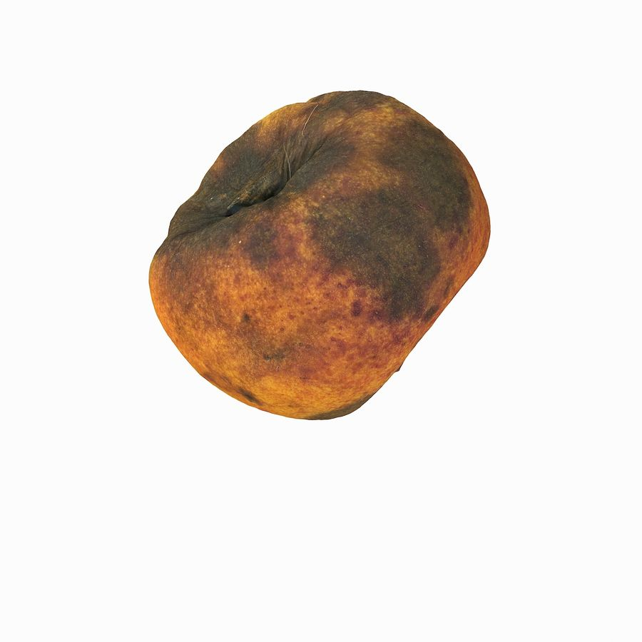 Rotten Rotte Apricot 03 royalty-free 3d model - Preview no. 7