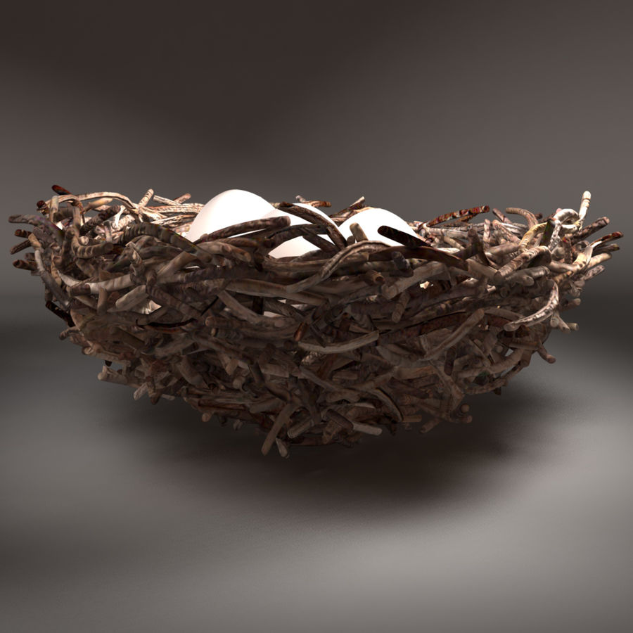 Bird Nest royalty-free 3d model - Preview no. 5