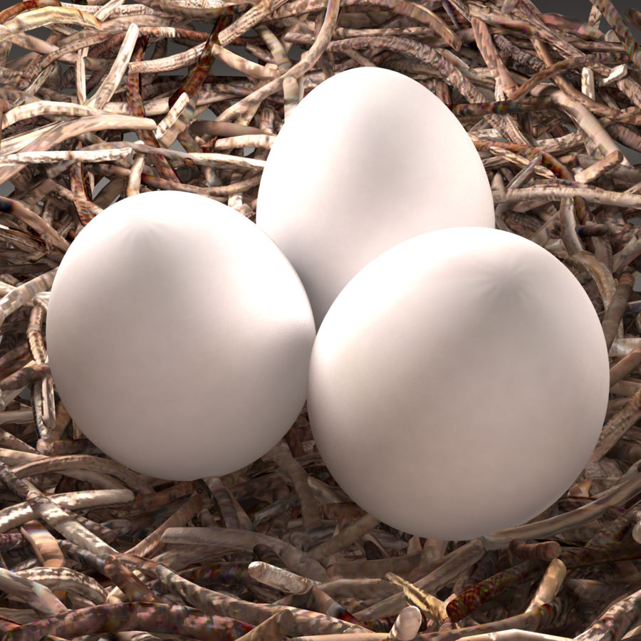 Bird Nest royalty-free 3d model - Preview no. 4