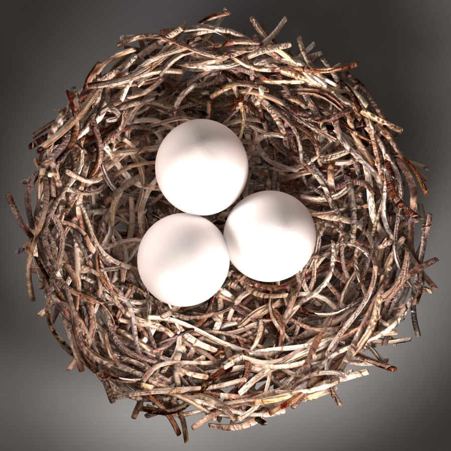 Bird Nest royalty-free 3d model - Preview no. 3