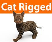 ładny kot uzbrojony 3d model