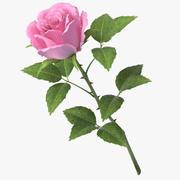 rose_v7_pink 3d model