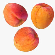 Apricot Realistic 3 Collection 3d model