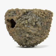 Swallow Nest 3d model