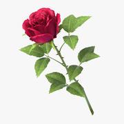 rose_v7_red 3d model