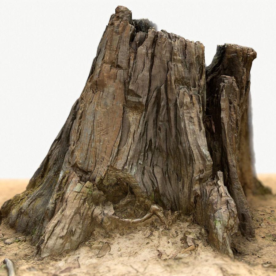 Tree Stump: Old Tree Stump 4 3D Model $39