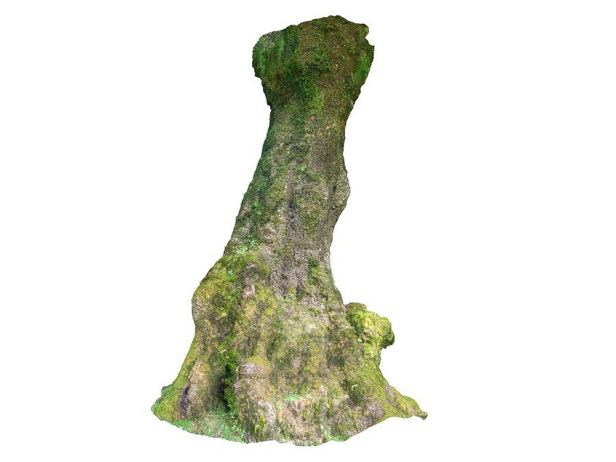 Albero della foresta di alloro 16K royalty-free 3d model - Preview no. 9
