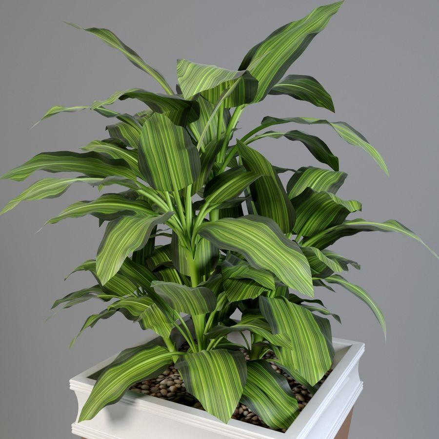 花盆与植物 royalty-free 3d model - Preview no. 2