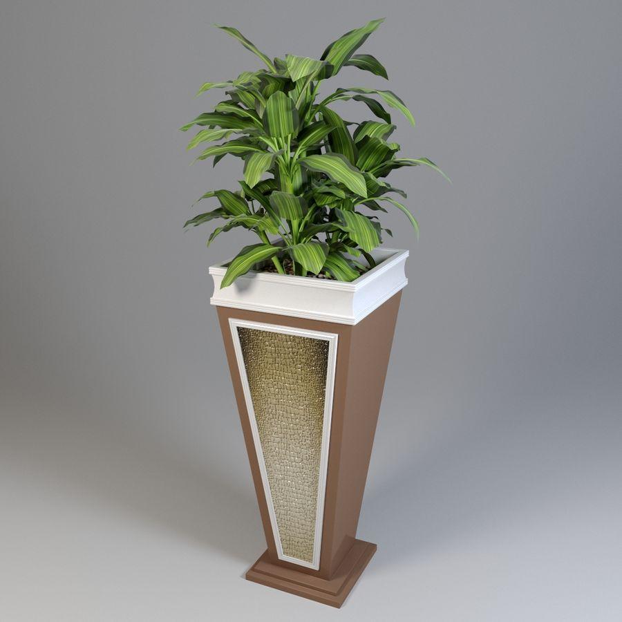 花盆与植物 royalty-free 3d model - Preview no. 1