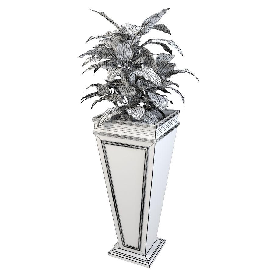 花盆与植物 royalty-free 3d model - Preview no. 5