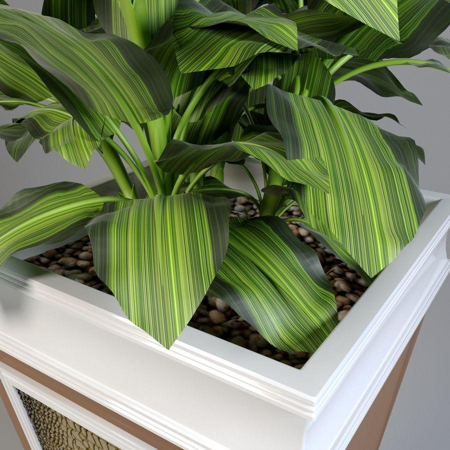花盆与植物 royalty-free 3d model - Preview no. 4
