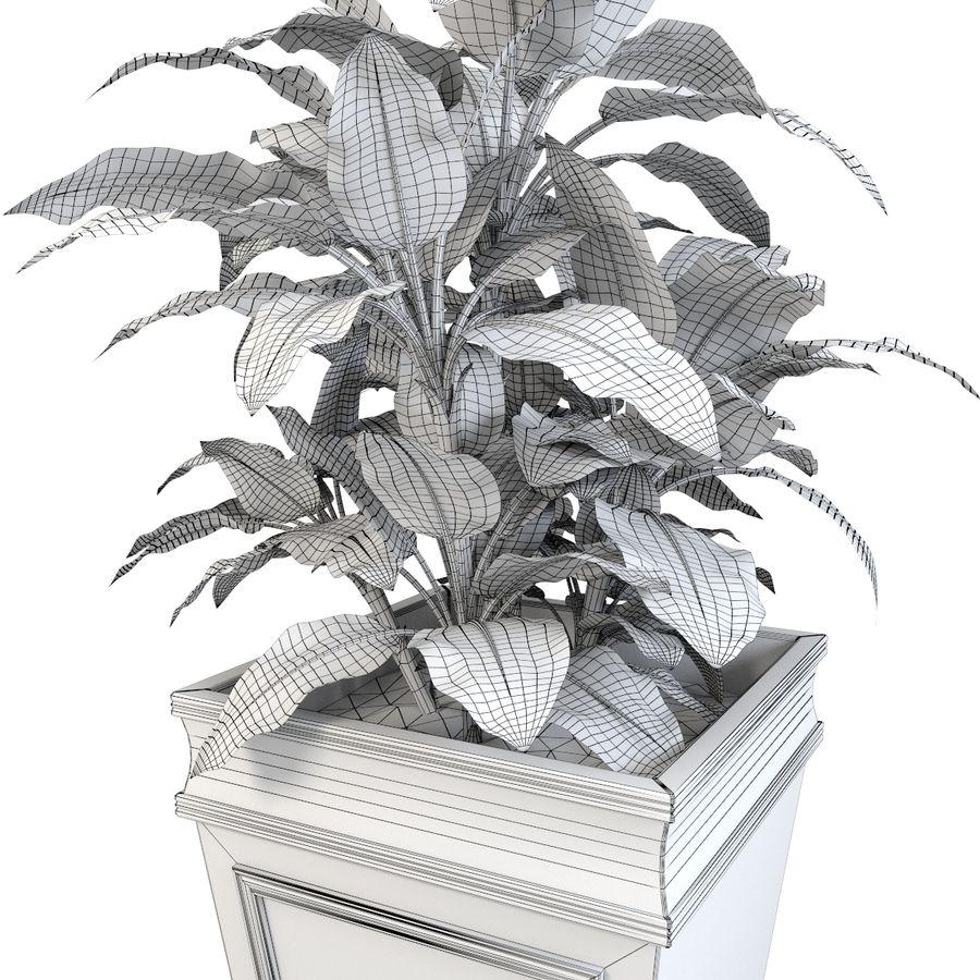 花盆与植物 royalty-free 3d model - Preview no. 6