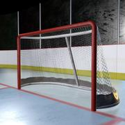 Hockey Net with Textures 3d model