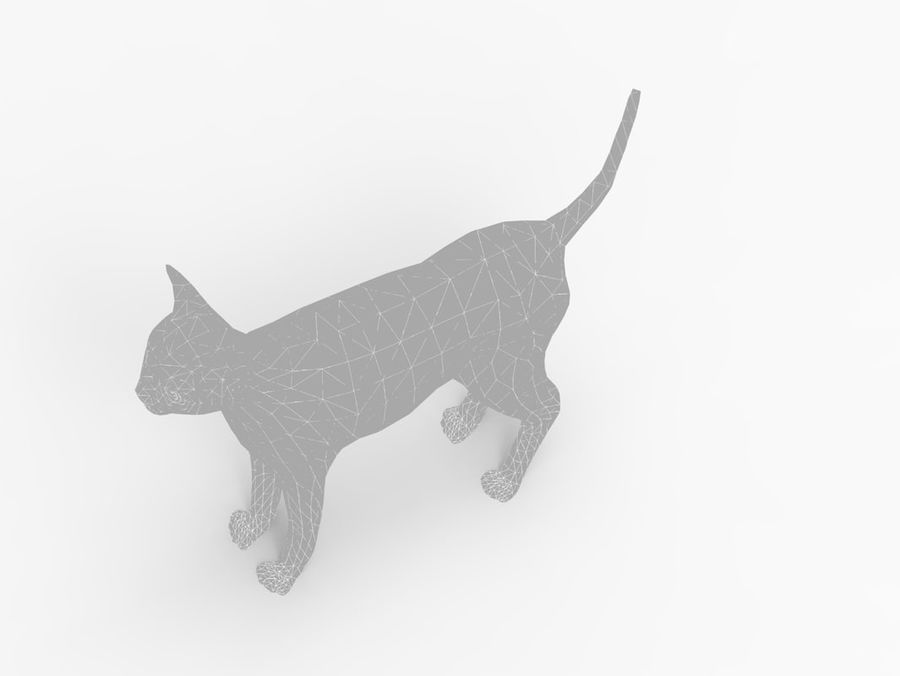 kot takielunek royalty-free 3d model - Preview no. 49