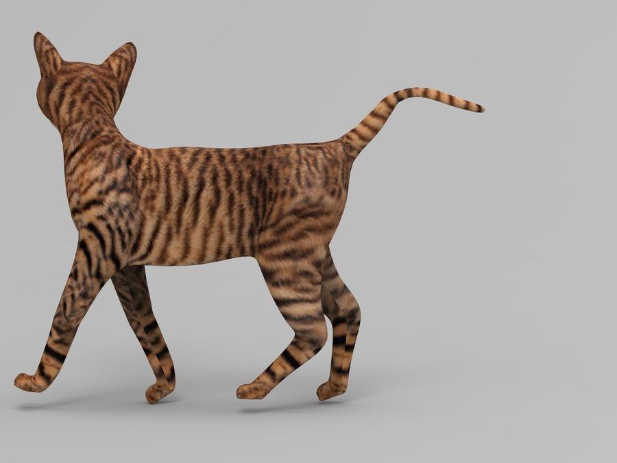 kot takielunek royalty-free 3d model - Preview no. 33