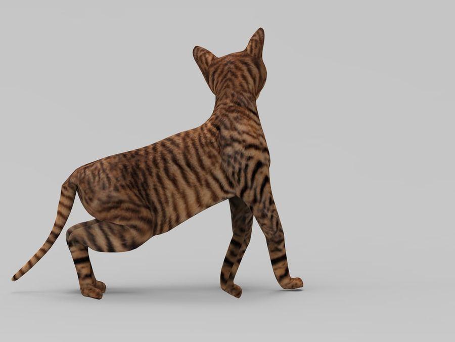 kot takielunek royalty-free 3d model - Preview no. 11