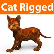 süße Katze manipuliert (1) 3d model