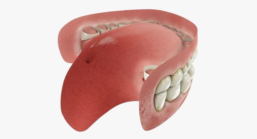 牙齿和牙龈和舌头 royalty-free 3d model - Preview no. 7