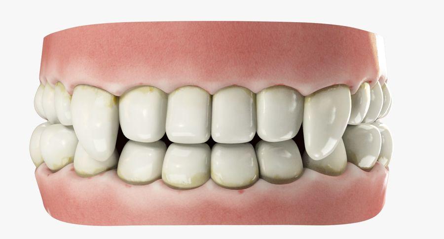 牙齿和牙龈和舌头 royalty-free 3d model - Preview no. 8