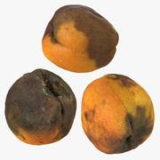 Rotte rotte abrikozencollectieset 3d model