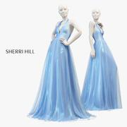 SHERRI HEUVEL 50834 3d model