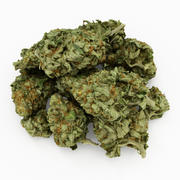 Cannabis 05 3d model