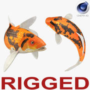 Koi Fish Rigged for Cinema 4D 3d model