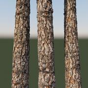 8k materiale corteccia di legno di pino (vray, seamless texture) 3d model