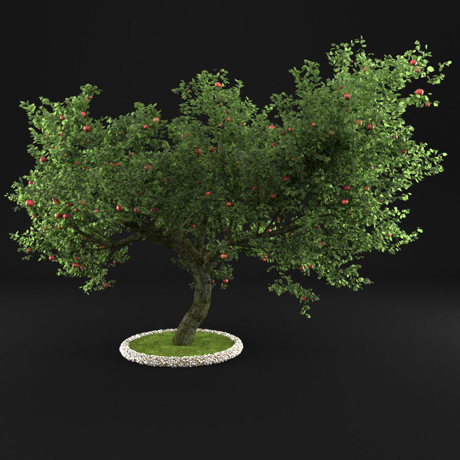 Apple Tree 1 royalty-free 3d model - Preview no. 6