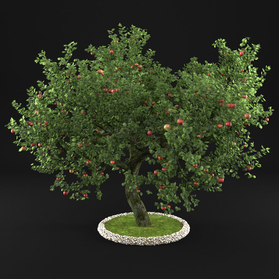 Apple Tree 1 royalty-free 3d model - Preview no. 1