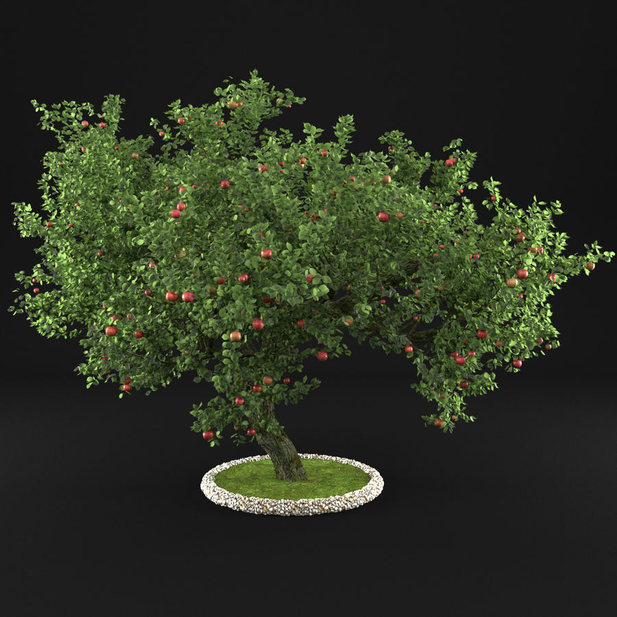 Apple Tree 1 royalty-free 3d model - Preview no. 2