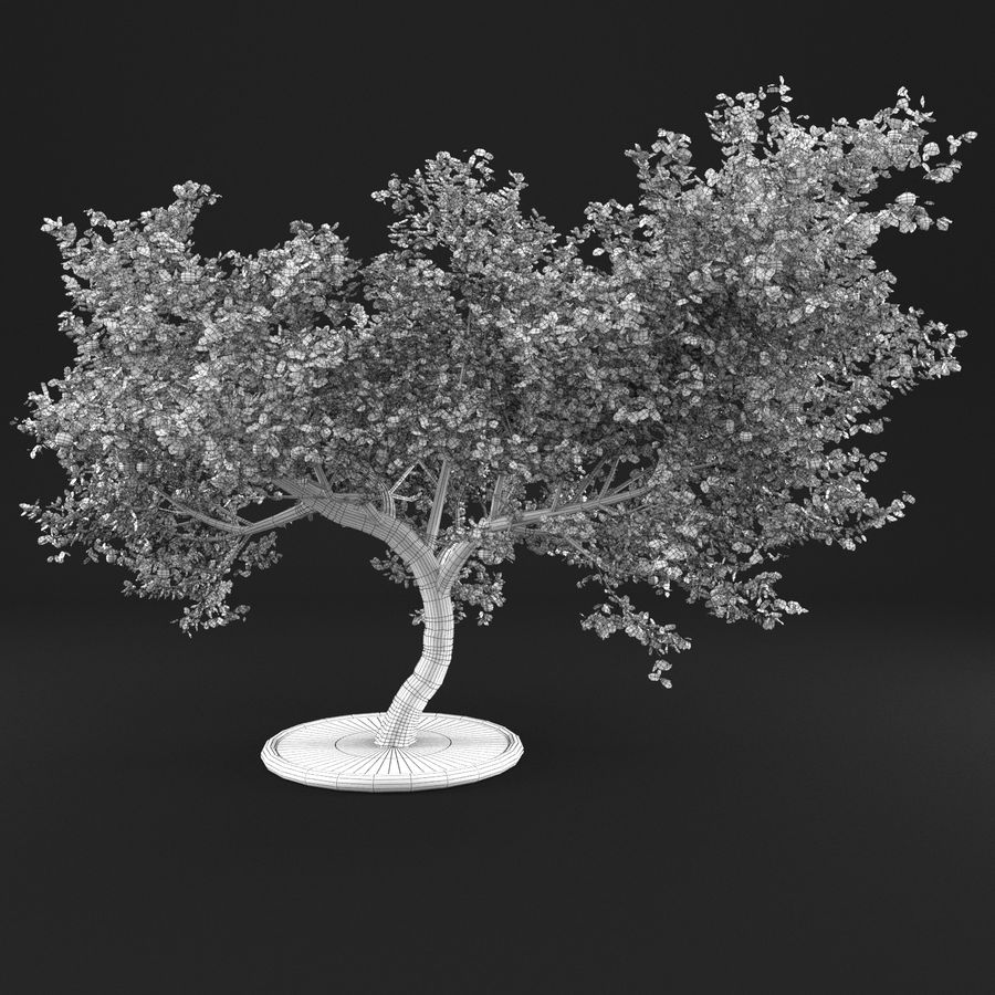 Apple Tree 1 royalty-free 3d model - Preview no. 14