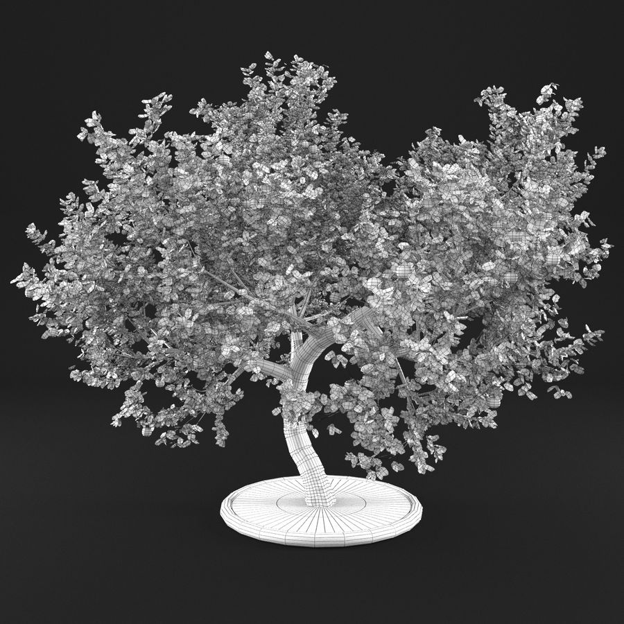 Apple Tree 1 royalty-free 3d model - Preview no. 9