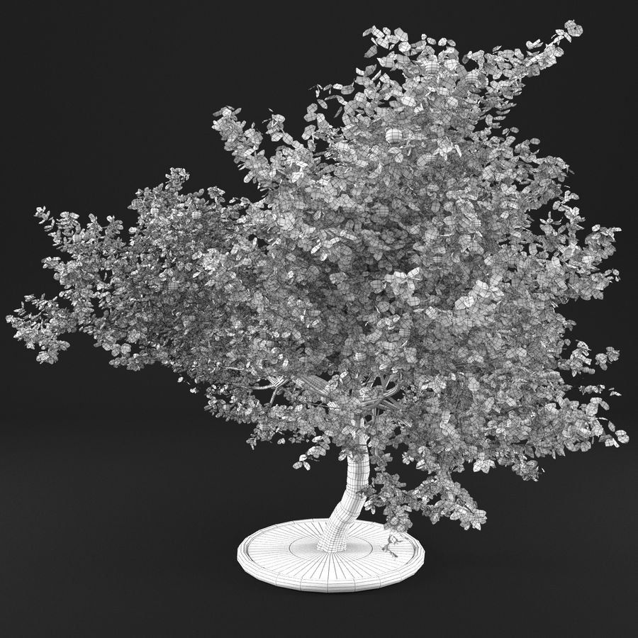 Apple Tree 1 royalty-free 3d model - Preview no. 13