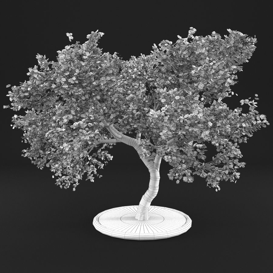 Jabłoń 3 royalty-free 3d model - Preview no. 16
