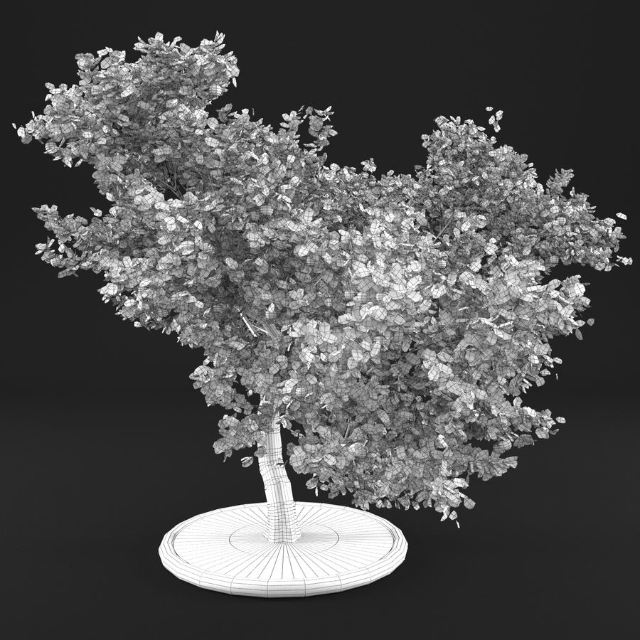 Jabłoń 3 royalty-free 3d model - Preview no. 12