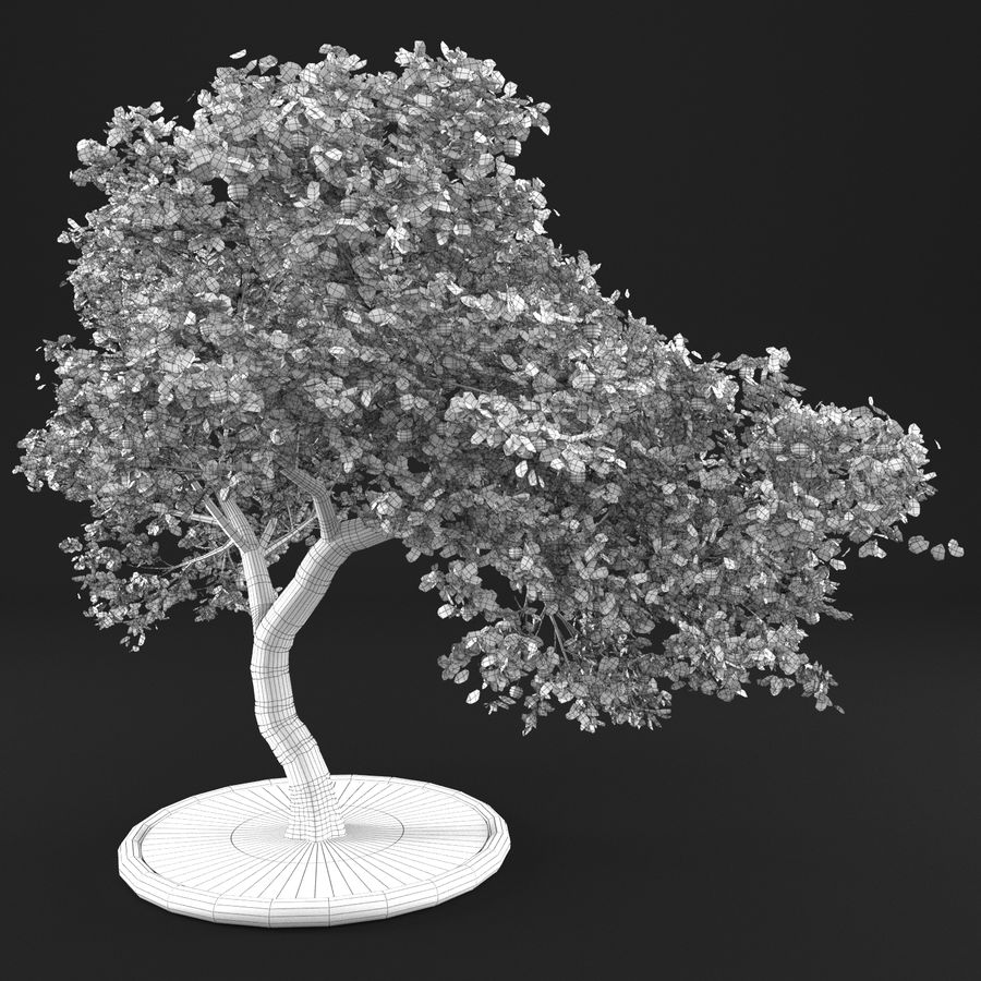 Jabłoń 3 royalty-free 3d model - Preview no. 9