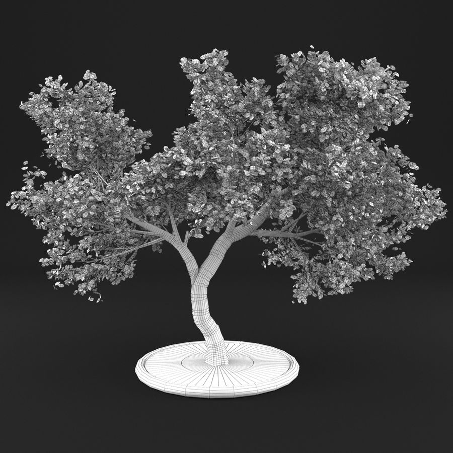 Jabłoń 3 royalty-free 3d model - Preview no. 13