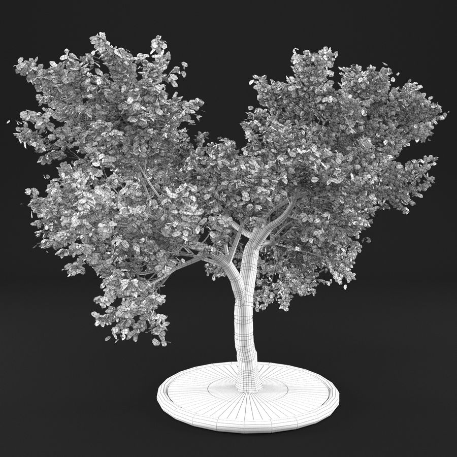 Jabłoń 3 royalty-free 3d model - Preview no. 14