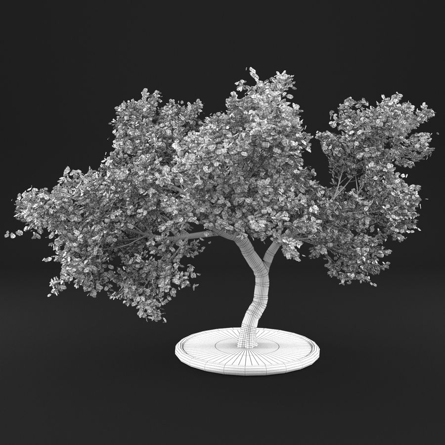 Jabłoń 3 royalty-free 3d model - Preview no. 10