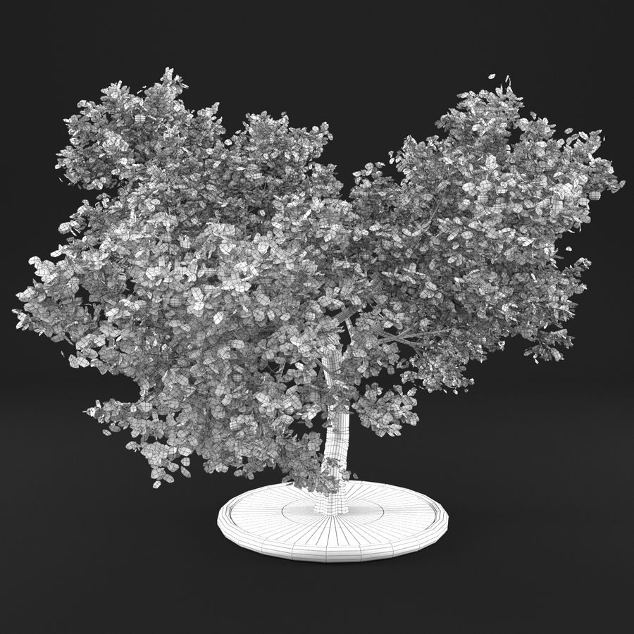 Jabłoń 3 royalty-free 3d model - Preview no. 11
