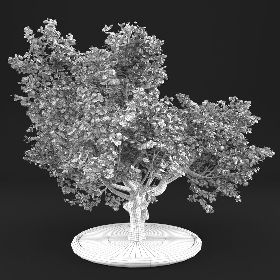Яблоня 8 royalty-free 3d model - Preview no. 11