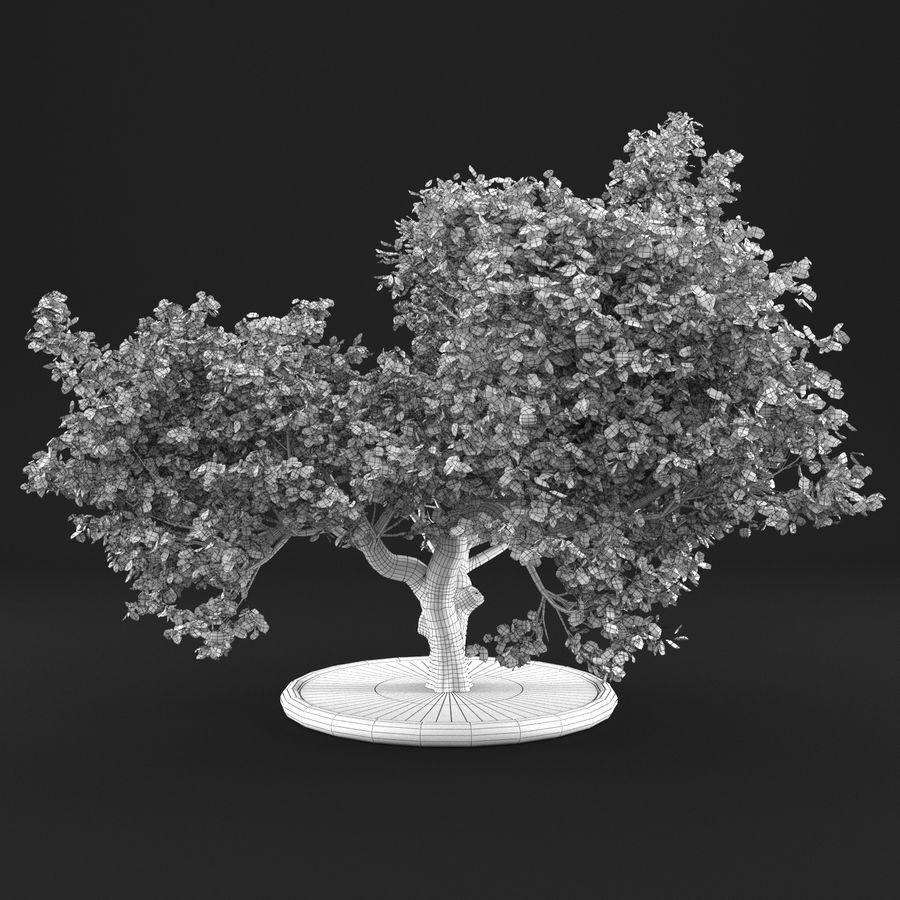 苹果树8 royalty-free 3d model - Preview no. 15