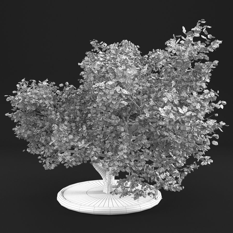 Apple Tree 10 royalty-free 3d model - Preview no. 15