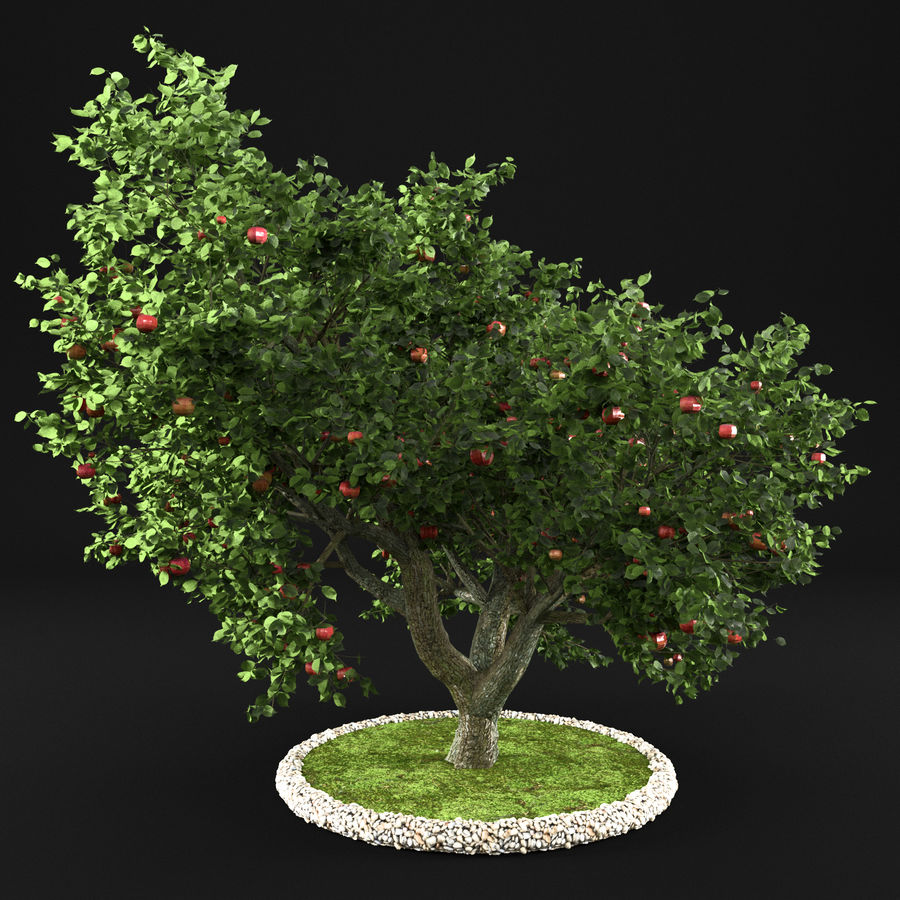 Apple Tree 10 royalty-free 3d model - Preview no. 4