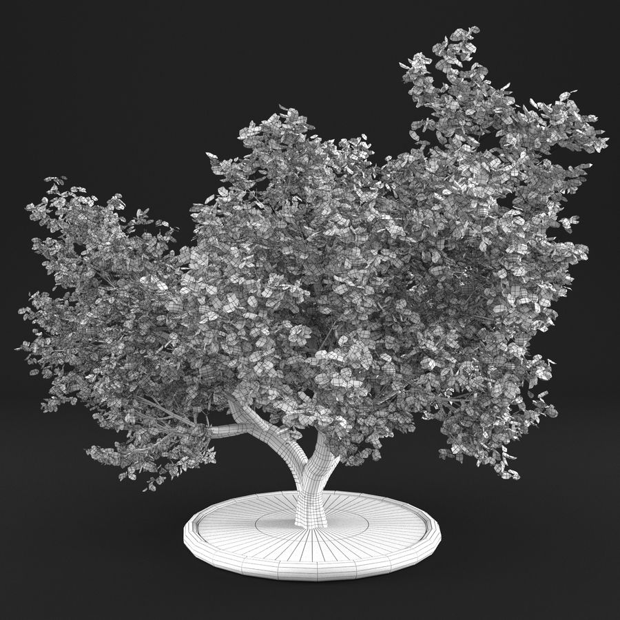 Apple Tree 10 royalty-free 3d model - Preview no. 10