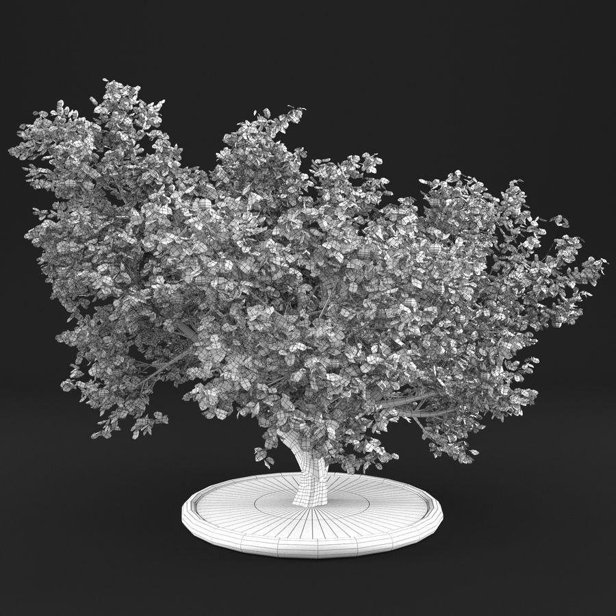 Apple Tree 10 royalty-free 3d model - Preview no. 13