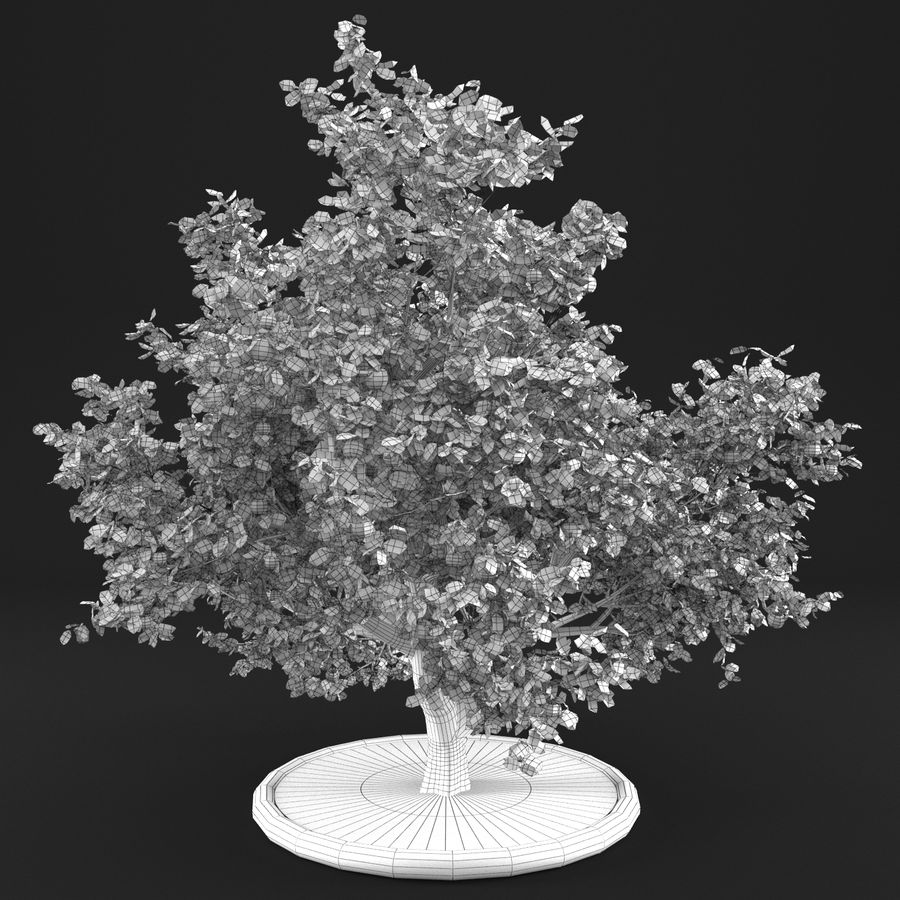 Apple Tree 10 royalty-free 3d model - Preview no. 11