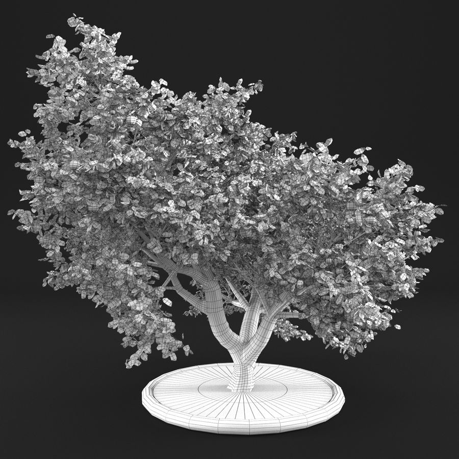 Apple Tree 10 royalty-free 3d model - Preview no. 12